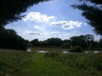 Park_Fougerette