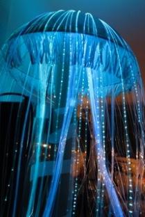 Detail Qualle (Licht-Objekt aus Glasfaser)