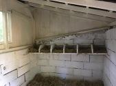 Frische Lege-Boxen für frische Eier